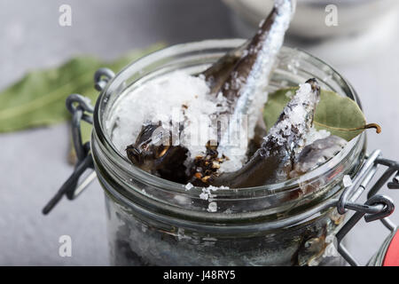 Preparing the salted capelin. Fish preserved for eating - Stock Photo