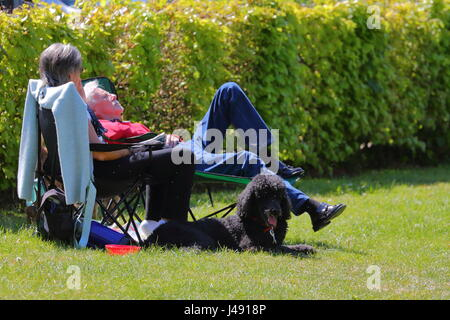 Henley-on-Thames, UK. 10th May 2017. Wonderful weather in the Thames valley. Visitors and locals enjoy a warm afternoon - Stock Photo