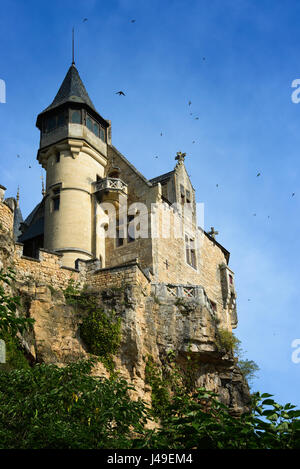 Swallows flying around spooky medieval Chateau de Montfort castle, built upon the cliffs along Dordogne river in - Stock Photo