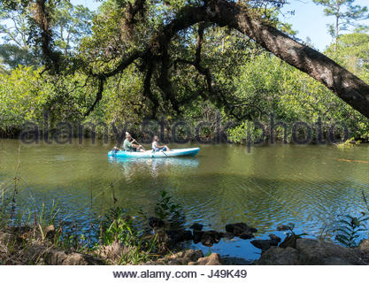 A couple paddles a kayak on the Estero River at Koreshan State Park in Estero, Florida - Stock Photo