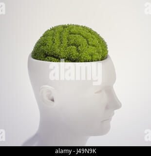 Plant shaped like a human brain - intelligence and memory concept 3D illustration - Stock Photo