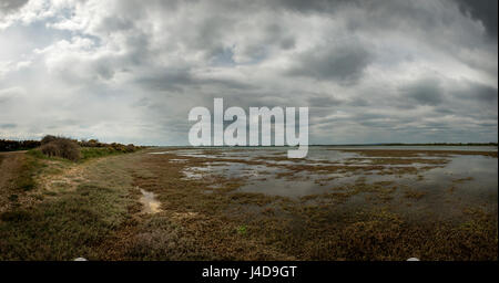 Low tide at Pagham Harbour Nature Reserve in West Sussex, UK - Stock Photo