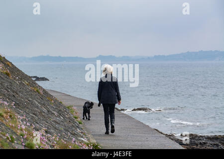 Mousehole, Cornwall, UK. 12th May 2017. UK Weather. The sunshine manages to break through the dark skies briefly at Mousehole, after overnight showers. Feeling humid, thundery showers are forecast for later. Seen here an early morning dog walker out on the breakwater at Mousehole. Credit: Simon Maycock/Alamy Live News