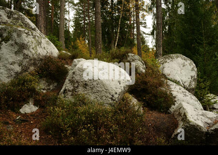 Large rock boulders in forest along Schlüchtsee,Southern Blck Forest Nature Park, Grafenhausen, Germany - Stock Photo