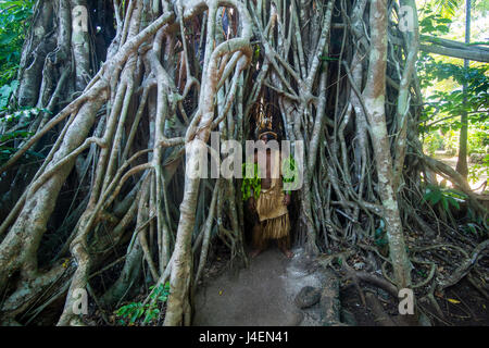 Traditional dressed man standing in a giant banyon tree, Ekasup Cultural Village, Efate, Vanuatu, Pacific - Stock Photo