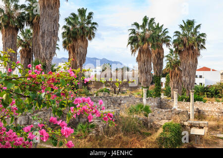 Ancient Agora, Bougainvillea and palm trees, Greek, Roman and Byzantine ruins, Kos Town, Kos, Dodecanese, Greek Islands, Greece