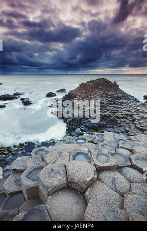An evening view of the Giant's Causeway, UNESCO World Heritage Site, County Antrim, Ulster, Northern Ireland, United - Stock Photo