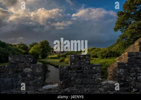Tintern Abbey, County Wexford, Leinster, Republic of Ireland, Europe - Stock Photo