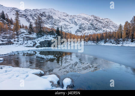 The snowy peaks are reflected in the frozen Lake Mufule, Malenco Valley, Province of Sondrio, Valtellina, Lombardy, - Stock Photo