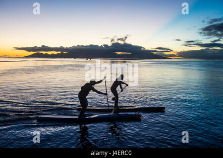 Stand up paddlers working out at sunset with Moorea in the background, Papeete, Tahiti, Society Islands, French - Stock Photo
