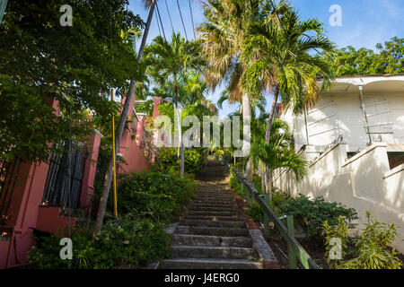 99 steps, little alley in Charlotte Amalie, capital of St. Thomas, US Virgin Islands, West Indies, Caribbean, Central - Stock Photo
