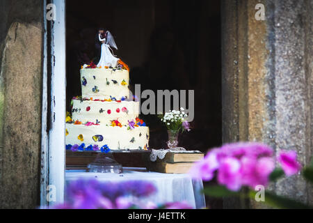 Pretty wedding cake with white icing and flowers topped with figurines of the bride and groom. Pink and purple flowers in the foreground, blurred back