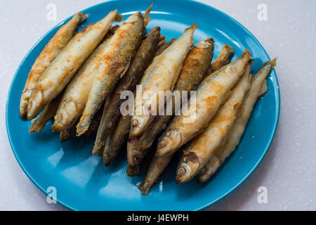 Fried smelts fish lays on a white plate over gray tablecloth - Stock Photo