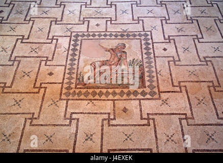 The 'Narcissus' mosaic Inside the 'House of Dionysus'  in the Archaeoological Park of Paphos (UNESCO World Heritage - Stock Photo