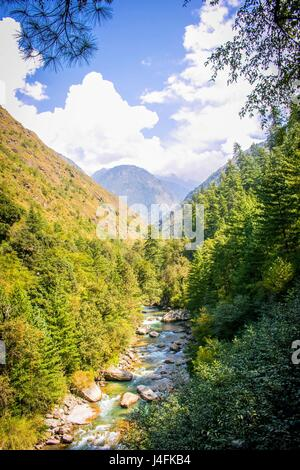 Nature in Himachal Pradesh. - Stock Photo