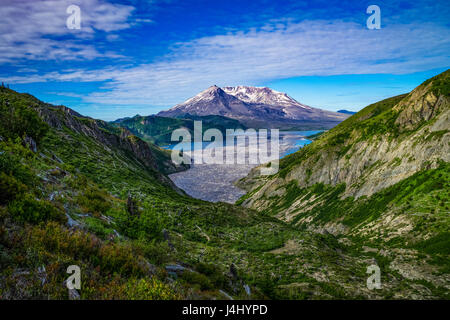 Spirit Lake and floating logs on the north side of Mount Saint Helens - Stock Photo
