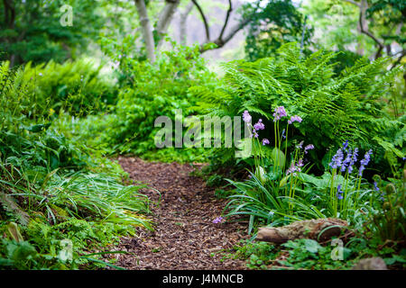 Hortus Botanicus, Botanical garden in Leiden, Netherlands - Stock Photo