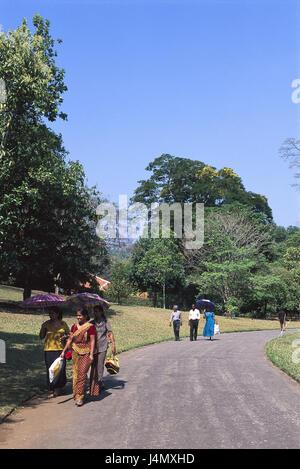 Sri Lanka, Kandy, botanical garden, visitor, outside South Asia, island, island state, province Central, district - Stock Photo