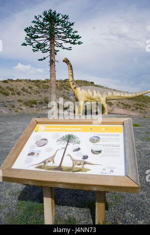 Replica of sauropod camarasaurus eating leafs of araucaria conifer tree near IGEA village, La Rioja, Spain. sauropoda - Stock Photo