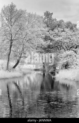 Infra Black and White Picture of Trees and Pool near Willie Lott's Cottage - Stock Photo