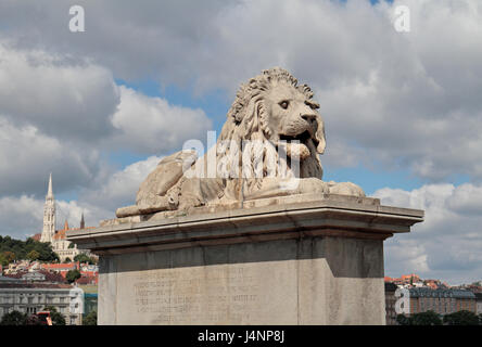 Lion on the entrance to the Chain Bridge over the River Danube in Budapest, Hungary. - Stock Photo