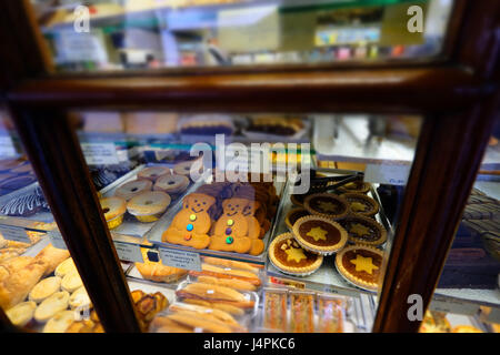 Ginger bread bears in bakers shop window - Stock Photo