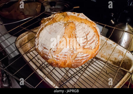 Closeup of homemade sourdough bread round loaf on wire rack in kitchen with score marks - Stock Photo