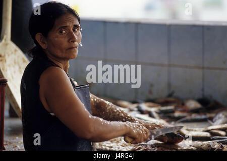 Ecuador, Puerto Lopez, market, woman, fish, disassemble, portrait, - Stock Photo