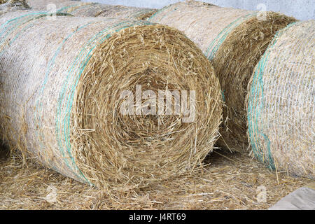 straw bale rolled up - Stock Photo