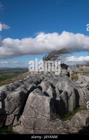 Cumbrian landscape, Hampsfell