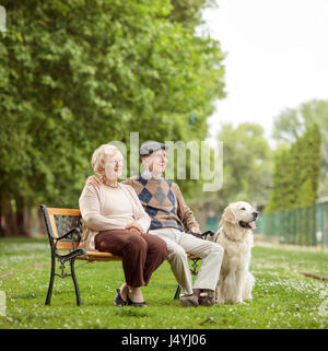 Elderly couple with a dog sitting on a bench in a park - Stock Photo