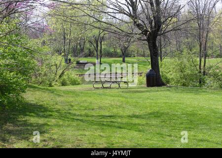 Walking around the park just looking at the sights of the surroundings. - Stock Photo