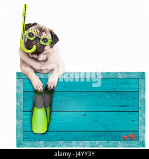 funny pug dog with blue vintage wooden beach sign, with goggles, snorkel and flippers for summer, isolated on white - Stock Photo
