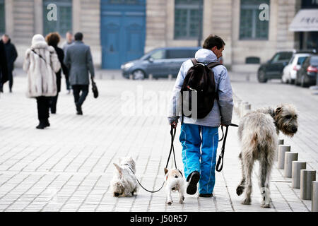 Dog sitter in Paris, France - Stock Photo