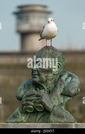 A seagull perches on the statue of Sir Peter Scott at the Wildfowl and Wetlands Trust at Slimbridge in Gloucestershire. - Stock Photo