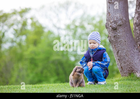 Young boy playing with pet rabbit in spring park - Stock Photo