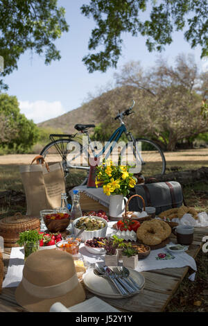 A picnic scene in the countryside, with a bike and fresh foods laid out - Stock Photo