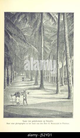 Image taken from page 235 of 'Schetsen uit Insulinde' - Stock Photo
