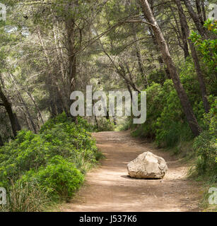 Road or trail blocked by big rock. Overcome an obstacle. - Stock Photo