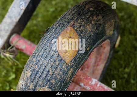 dirty tire of wheelbarrow with leaf on it in front of green grass - Stock Photo