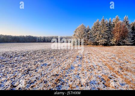Winter landscape with plowed fields and forest under blue sky. Poland, Swietokrzyskie. - Stock Photo