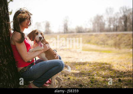 Young pet dog breeds beagle walking in park outdoors. woman carefully walks puppy, plays and tranitsiruetsya, sits - Stock Photo