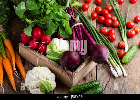 Harvest still life. Food composition of fresh organic vegetables, beets and carrots, cauliflower and rudish on rustic - Stock Photo