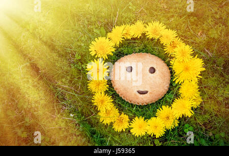 Cookies with symbol smiles on the background of green grass in wreath of dandelions in the sunlight. The horizontal - Stock Photo