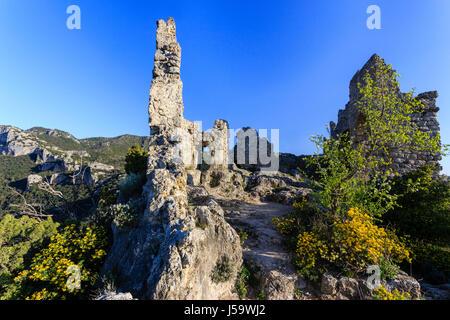 France, Herault, Saint Guilhem le Desert, labelled Les Plus Beaux Villages de France, the Geant castle ruins above - Stock Photo