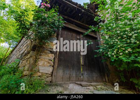 Wooden Garden Door - Stock Photo