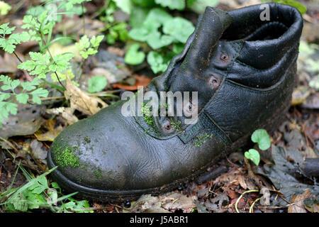 boot,lost,mossy,shoe,old,ausgelatscht,ausgediehnt,arbeitsschuh - Stock Photo