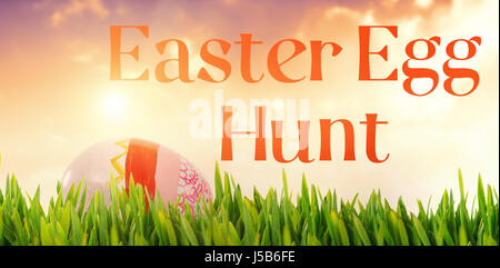 Grass growing outdoors against painted easter eggs on white background - Stock Photo