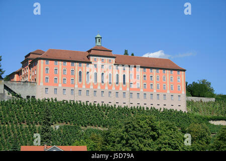 house building summer summerly lake constance vineyard vines germany german - Stock Photo