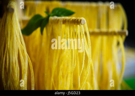 Homemade egg noodles - Stock Photo
